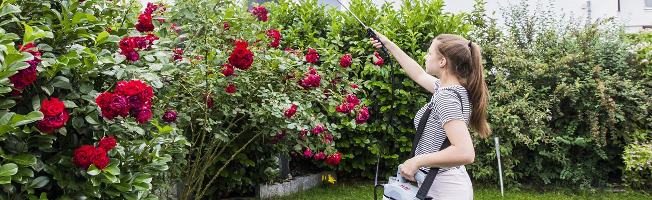 Dārzkopības miglotāji labas cenas dārza tehnikai līzingā ar piegādi visā Latvijā